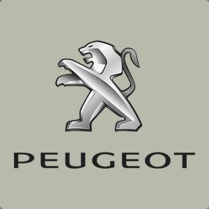 peugeot-grey.png